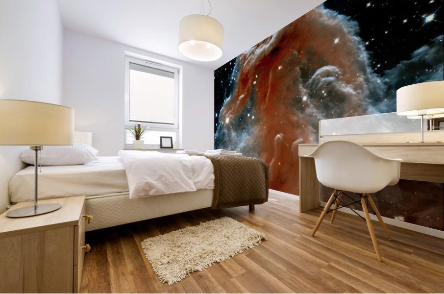 Horsehead Nebula In Space Mural print