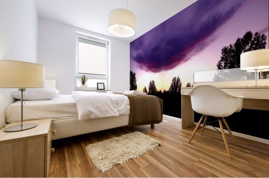 nube 50 Mural print