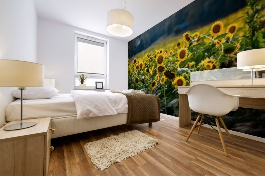 Sunflower Field Mural print