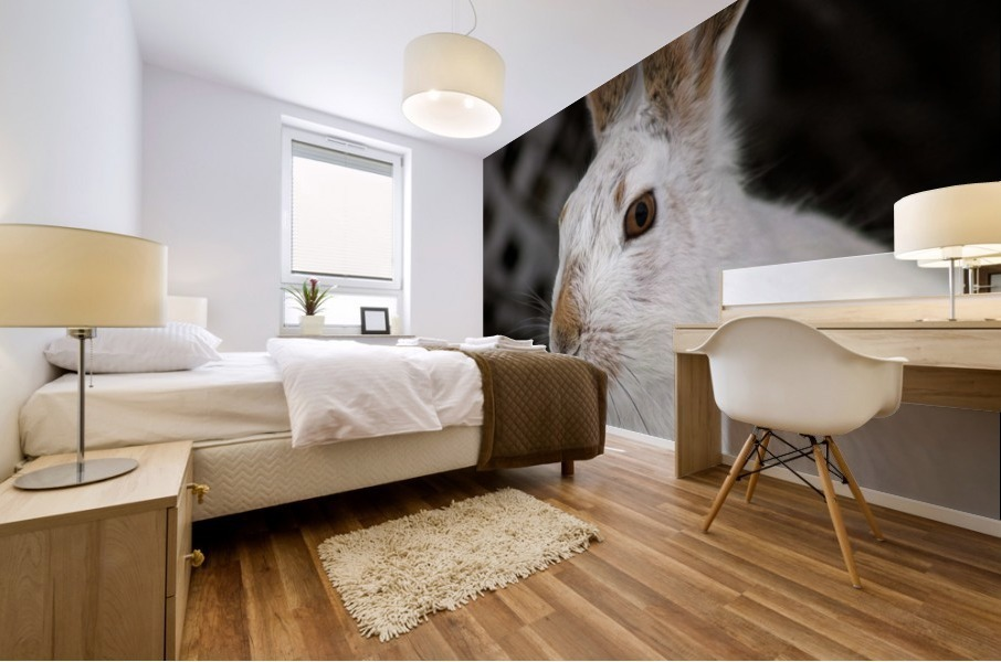 Mr Rabbit Mural print