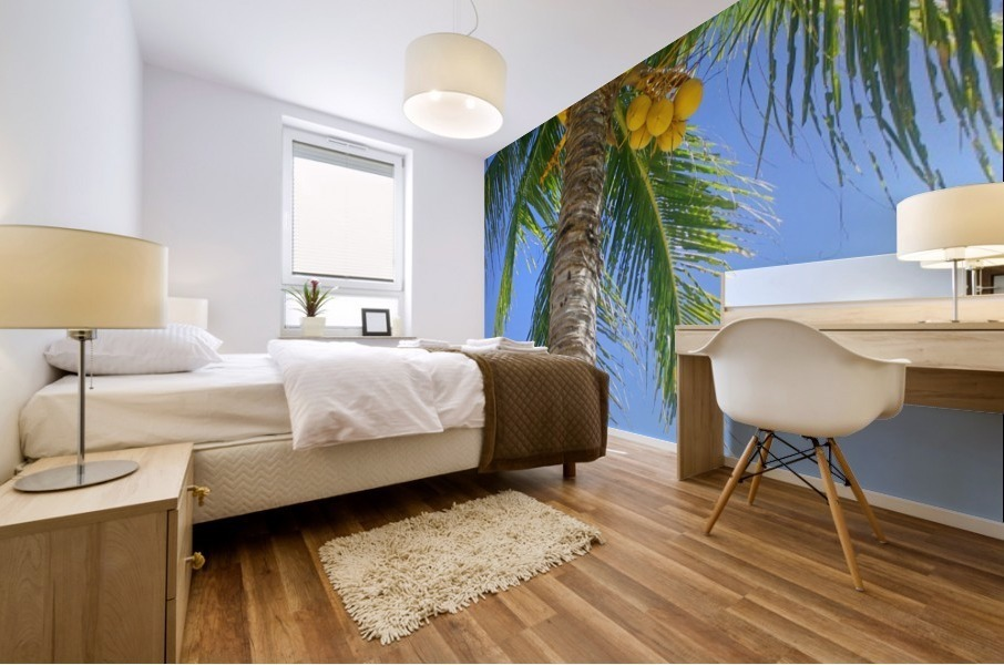 Palm Tree and Coconuts Mural print