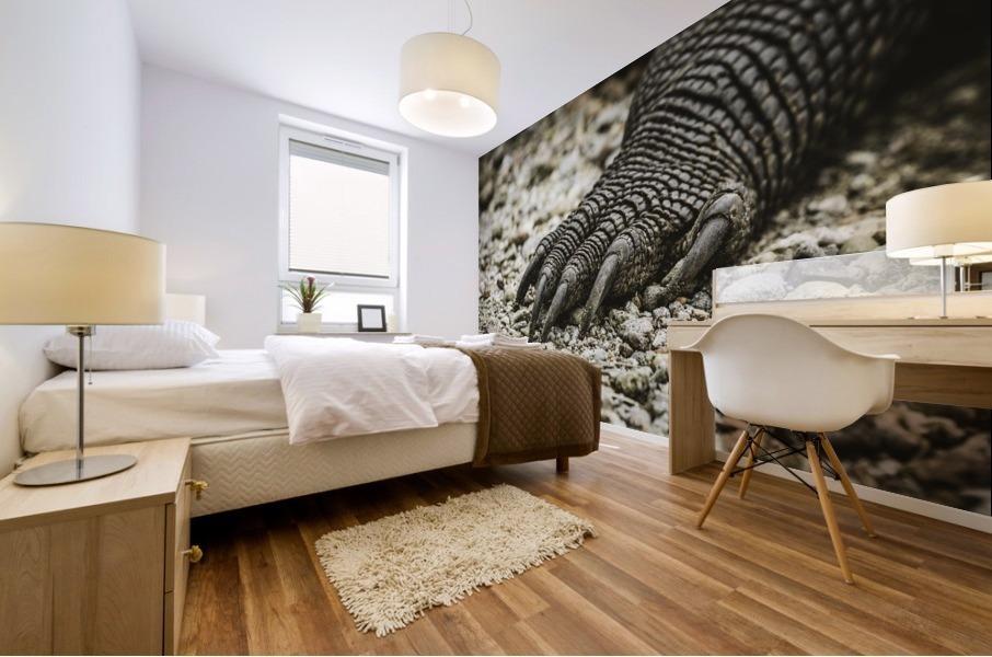 Dragons Claw Mural print