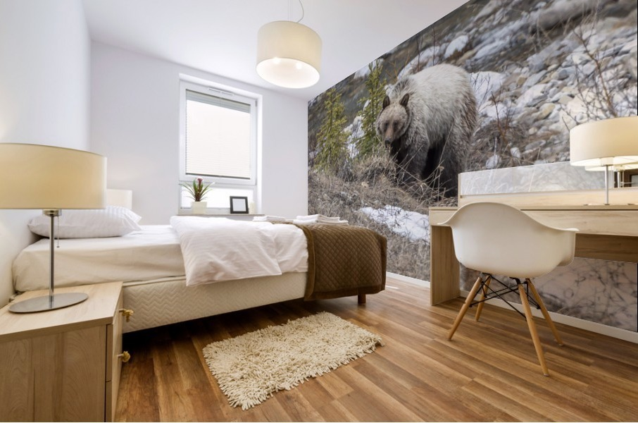 6944 - Grizzly Bear Mural print