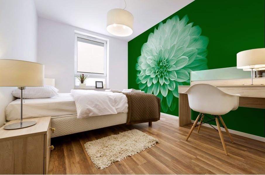Dahlia on Green Mural print