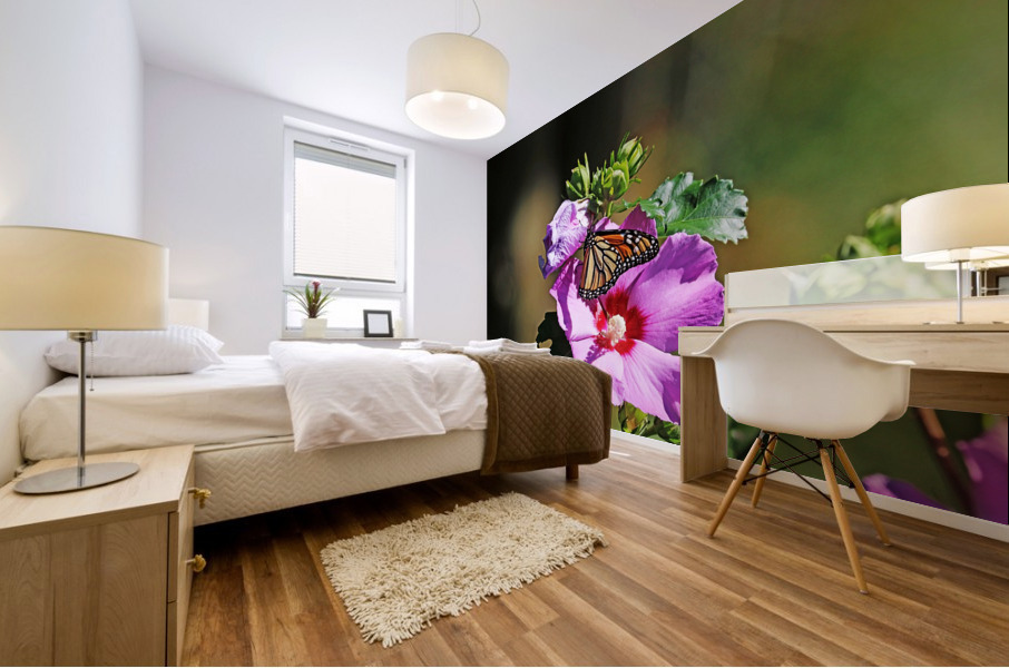 Monarch And Rose Of Sharon Mural print
