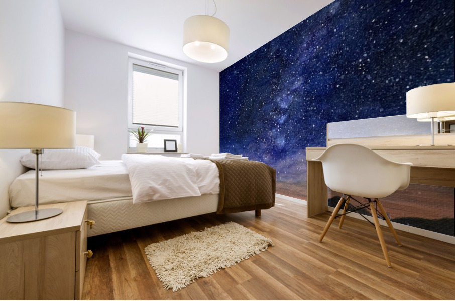 Stargazer Mural print