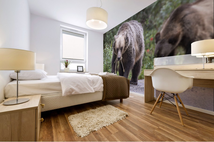 Grizzly Bear - Mouth Full Mural print
