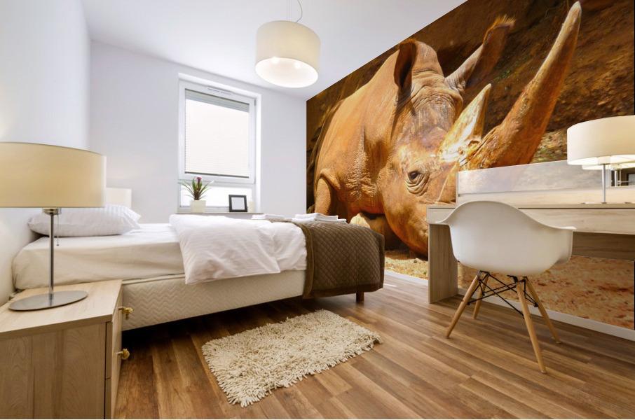 Rhino - Natural World Kids Gallery Mural print