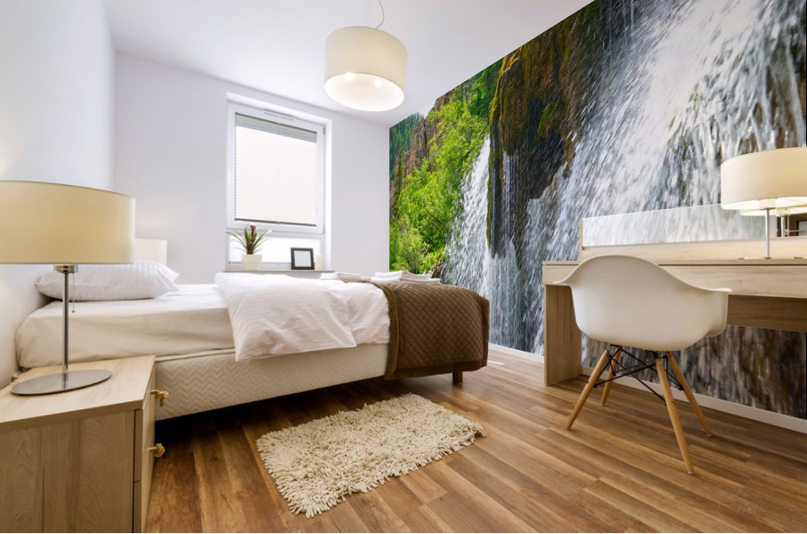 Wild Back Country Mural print