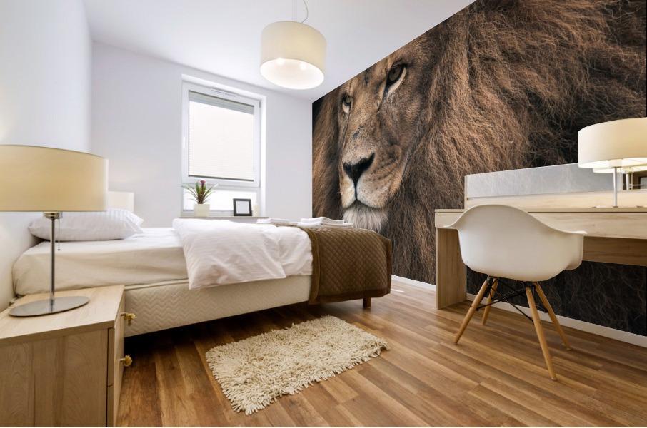 Lion Mural print