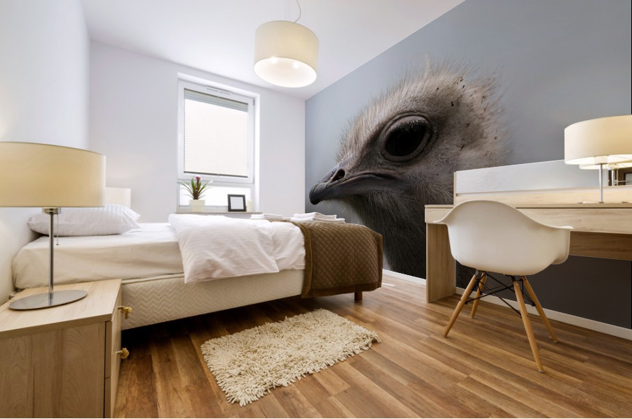Ostrich Mural print