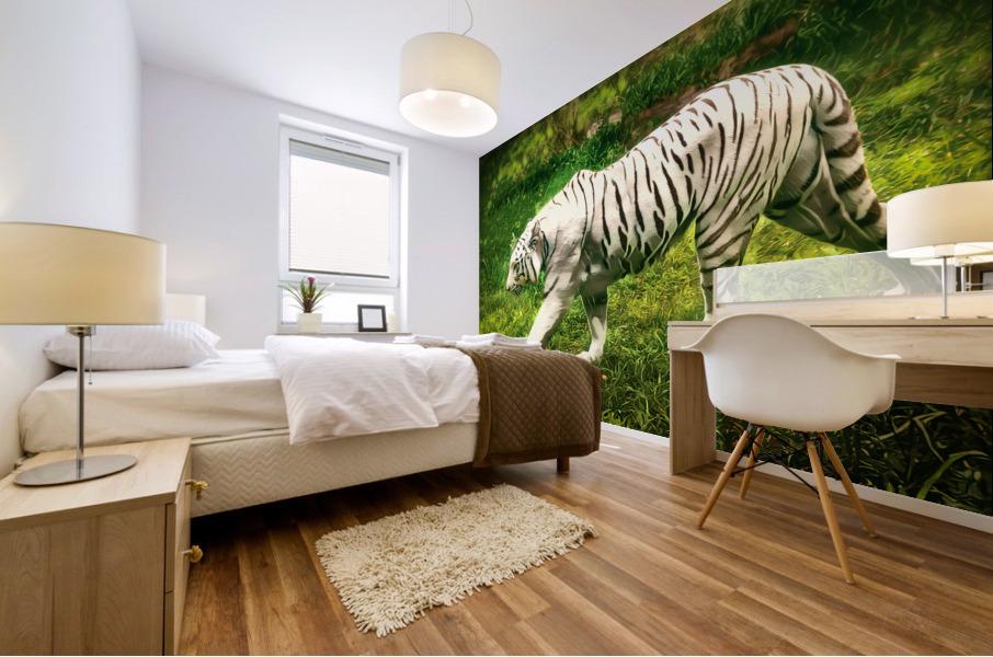White Bengal Tiger Mural print