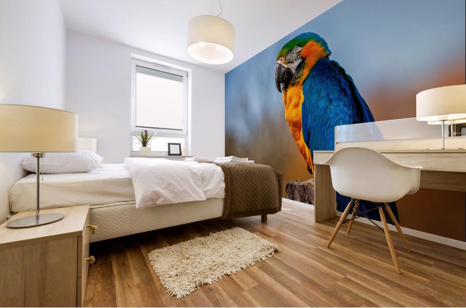 Parrot Mural print