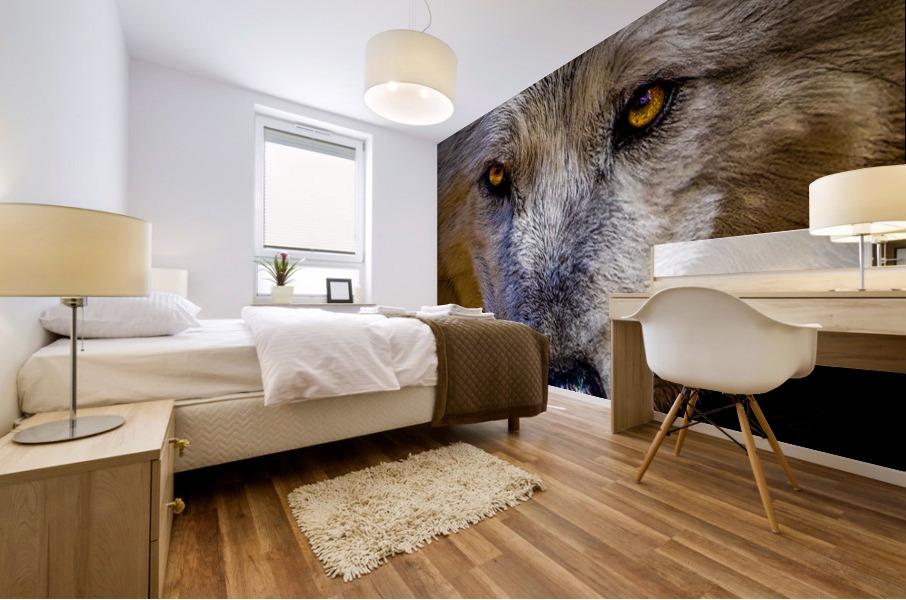 Wolf 2 Mural print