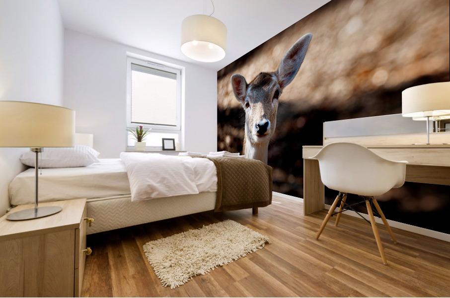 Fallow Deer 1 Mural print