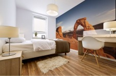 Arches National Park 1 Mural print