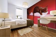 Razor  Cat Mural print