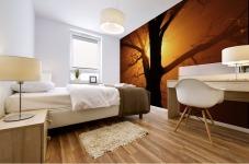 abstract sun tree Mural print