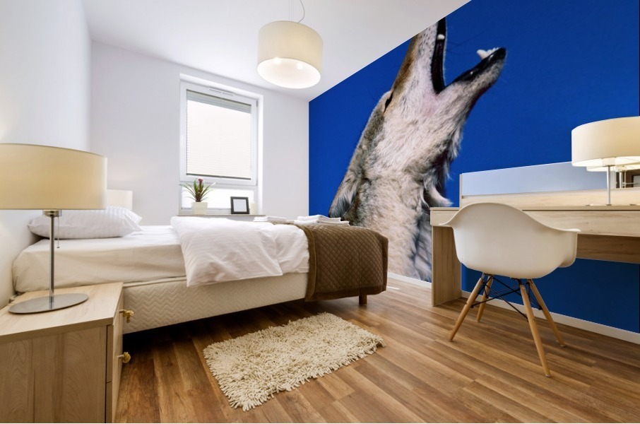 Howling Coyote Mural print