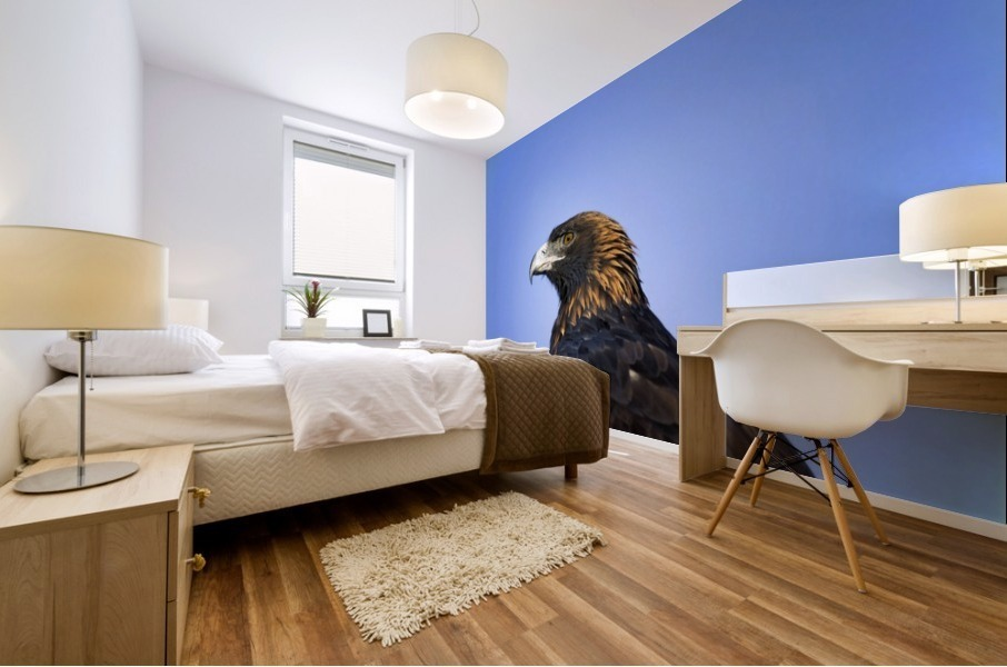 Golden Eagle Mural print
