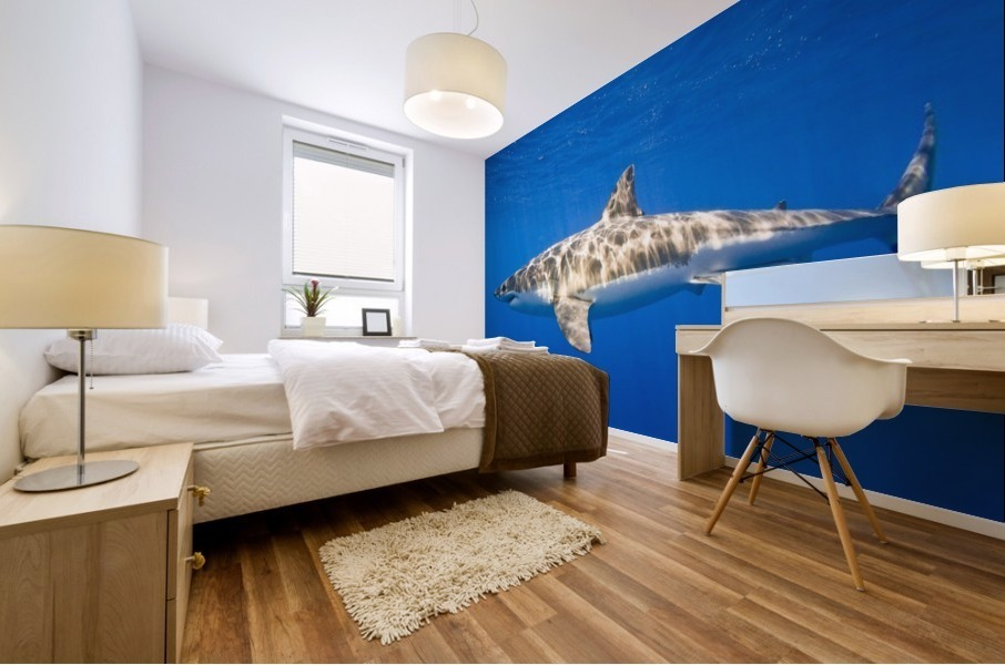 Great White Shark (Carcharodon Carcharias) Mural print
