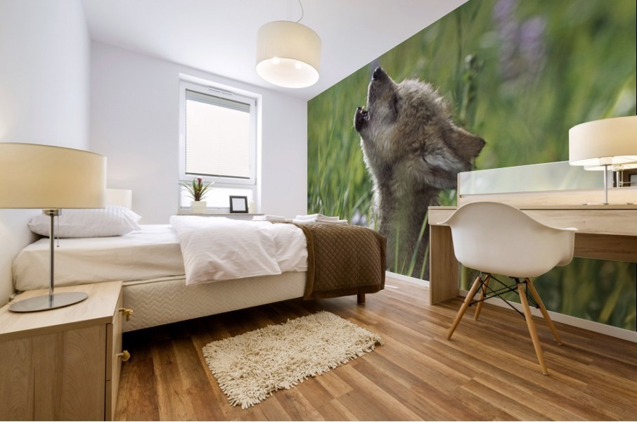 Wolf Puppy Howling In Mountain Meadow Mural print