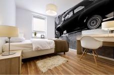 Black and White Vintage Cars Mural print