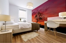 lonely sunset Mural print