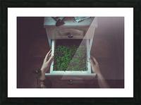 Avoir la main verte Picture Frame print