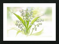 Lily of the valley Picture Frame print