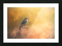 Lost in Bokeh Picture Frame print