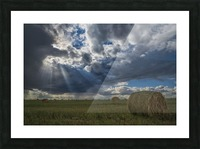 Sunlight breaks through the storm clouds over a field of hay bales; Saskatchewan, Canada Picture Frame print