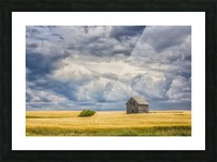 Abandoned building along the roads of rural Saskatchewan; Saskatchewan, Canada Picture Frame print