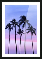 Five coconut palm trees in line with cotton candy sunset behind; Honolulu, Oahu, Hawaii, United States of America Picture Frame print
