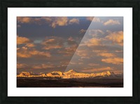 Glowing warmly lit snow covered mountain range and foothills with glowing clouds and blue sky at sunrise; Calgary, Alberta, Canada Picture Frame print