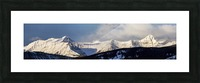 Panorama of snow covered mountains with early morning light, silhouetted forest in the foreground, blue sky and clouds; Kananaskis Country, Alberta, Canada Picture Frame print