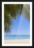Beautiful clear day on a white sandy beach with coconut palm tree fronds hanging above; Honolulu, Oahu, Hawaii, United States of America Picture Frame print