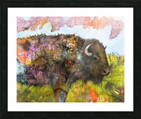 Illustration of a buffalo with colourful splashes and landscape Picture Frame print