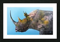 Illustration of a white rhinoceros against a blue background Picture Frame print