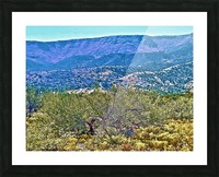Jerome-2 Picture Frame print