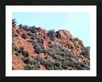 Jerome-6 Picture Frame print