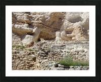 Montezuma's Castle-8 Picture Frame print
