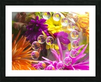 FLOWERS REFRACTION 13 Picture Frame print