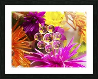 FLOWERS REFRACTION 9 Picture Frame print