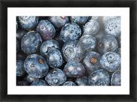 Close up shot of several fresh blueberries. Picture Frame print
