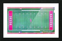 Beebe, AR | Badger Football Field Picture Frame print
