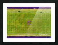 England, AR   Lions Football Field Picture Frame print