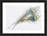 Watercolor Painting Of Two Peacock Feathers. Picture Frame print