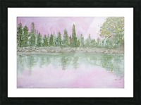 Pine reflections. Picture Frame print