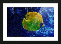 Under The Seal Lone Picture Frame print